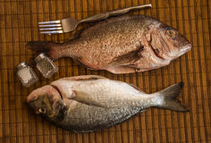 Still life with fish and cutlery royalty free stock images