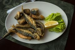 Still life with fish, lemon and herbs, selective focus royalty free stock photos