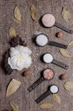 Still life of five different types of salt. stock image