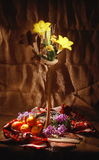 Still Life with flover and fruit,  light brush Royalty Free Stock Photography