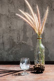 Still life with flower foxtail weed in glass bottles Royalty Free Stock Images