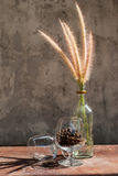 Still life with flower foxtail weed in glass bottles Stock Images