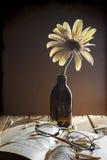 Still life flower gerbera glasses book stock images