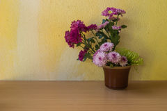 Still life with flower Stock Photo