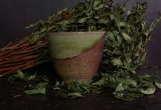 Still Life, Flowerpot, Still Life Photography, Herb royalty free stock photos