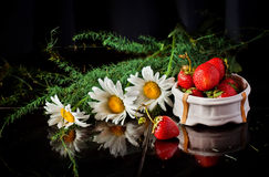 Still-life with flowers Stock Images