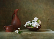 Still life with flowers of apple Royalty Free Stock Images