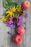 Still life with flowers and apples Stock Photos