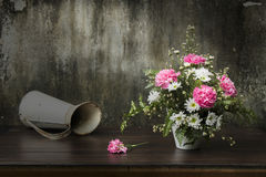Still Life Flowers drop by sunlight Royalty Free Stock Images
