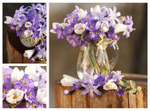 Still-life flowers forest - collage Royalty Free Stock Image