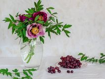 Still life with flowers and grapes. Pink and purple peonies in a vase on a bright background royalty free stock photography