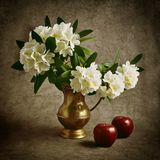 Still life with flowers and red apples. Royalty Free Stock Photo