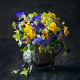 Still life with a flowers. Violets flowers in a vase on a wooden table. Still life with a flowers stock photo