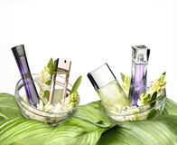 Still life of fragrances Royalty Free Stock Photography