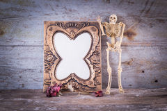 Still life with frame, skull, roses Royalty Free Stock Image