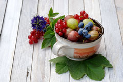 Still life with fresh fruits Royalty Free Stock Photography