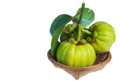 Still life with fresh garcinia cambogia on wood basket. Isolated Royalty Free Stock Image