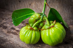 Still life with fresh garcinia cambogia on wooden background (Th Stock Photography