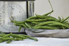 Still life with fresh green beans and balance scale. stock images