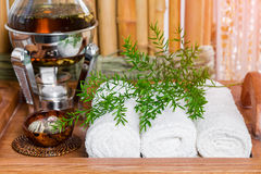 Still life fresh, hot herbal tea on a tray with towels and herbs in the spa. Stock Images