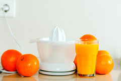 Still life of fresh oranges and juicer Royalty Free Stock Images
