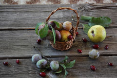Still life with fresh plums in a wicker basket and pears Stock Photography