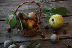 Still life with fresh plums in a wicker basket and pears Stock Photos