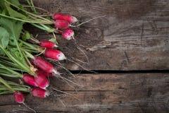 Still life fresh radish vegetables crop background on wood. Still life fresh radish vegetables harvest crop background on wood Stock Image