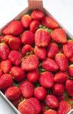 Still life of fresh red strawberries. Food, nutrition, nourishment, healthy, vegetarian, fruit, strawberry, many, abundance royalty free stock photography