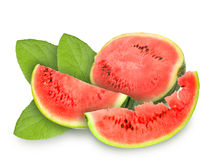 Fresh red watermelon and green leafs Stock Images