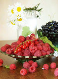 Still life with fresh ripe raspberry Royalty Free Stock Photos