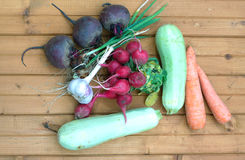Still life with fresh root vegetables closeup Royalty Free Stock Image