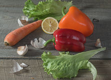 Still life with fresh vegetables. Stock Images