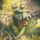 Time to relax and read. A still-life of a frog shaped candle holder. The frog is green, with glasses and a book in its hands. It sits on a patch of grass that royalty free stock images