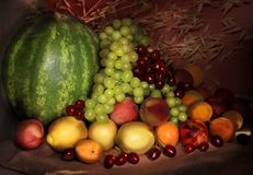 Still life of fruit. Composition of various fresh fruits and vegetables Royalty Free Stock Photography