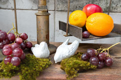 Still life of fruit and bird  ceramic plaster round plant at hou Stock Image