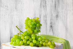 Still life fruit bottlle wine grapes Stock Image