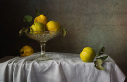 Still life of fruit bowl and fruit quince. Painting for home or office, decoration of dishes. Shot using the 50 mm lens Stock Images