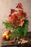 Still life with fruit, ferns and leaves Royalty Free Stock Image