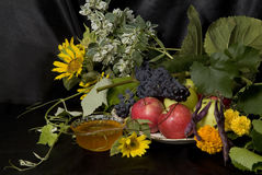 Still Life with Fruit and Honey Stock Photography