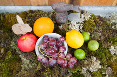 Still life of fruit on moss ground with rabbit and bird Stock Photos