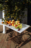Still life of fruit with sunlight outside, Stock Photos