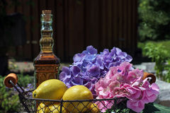 Still life with fruits and flowers Stock Photography