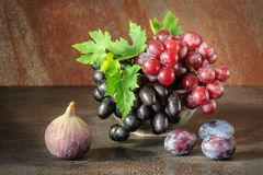 Still life with fruits: grape, fig, plum in the antique copper tin cup.  Royalty Free Stock Images