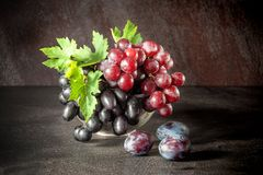 Still life with fruits: grape, plum in the antique copper tin cup.  Stock Photography