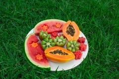 Still life. Fruits in a plate on the grass. Kiwi, watermelon, papaya. royalty free stock photo