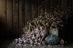 Still life with galics, pumpkin and dry little flowers on wood table background Stock Photography