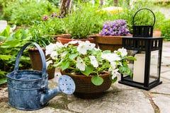 Still life in a garden Stock Photo
