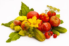 Still life of garden vegetables. Stock Image