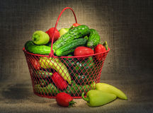 Still life with garden vegetables Stock Photos